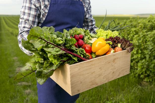 Dieta planetarna – sposób żywienia, którypomoże zapobiec katastrofie ekologicznej